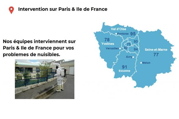 interventions nuisibles en région parisienne